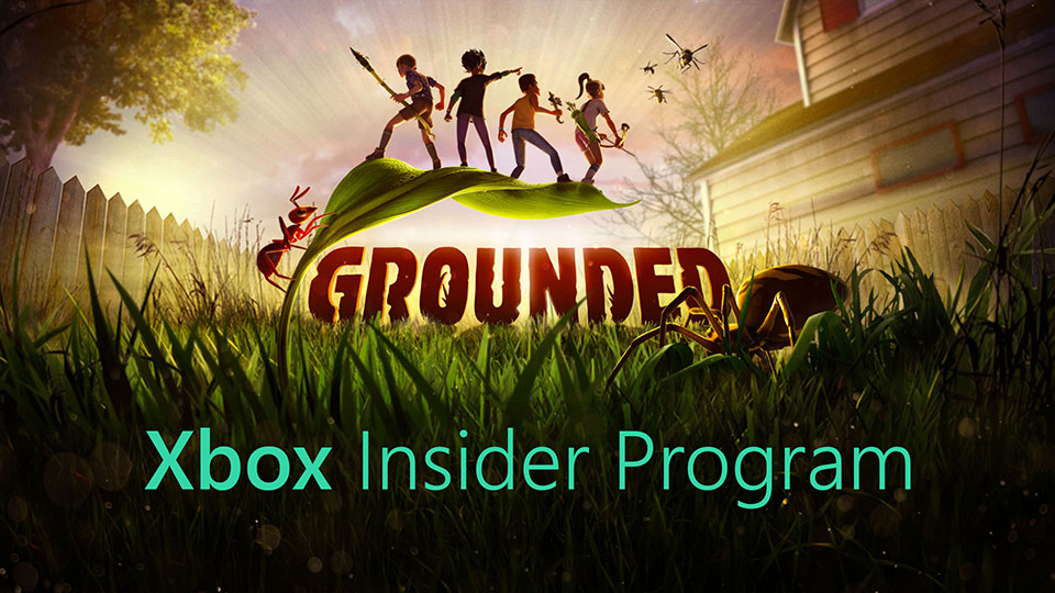 Grounded Xbox Insider Flight Header Image