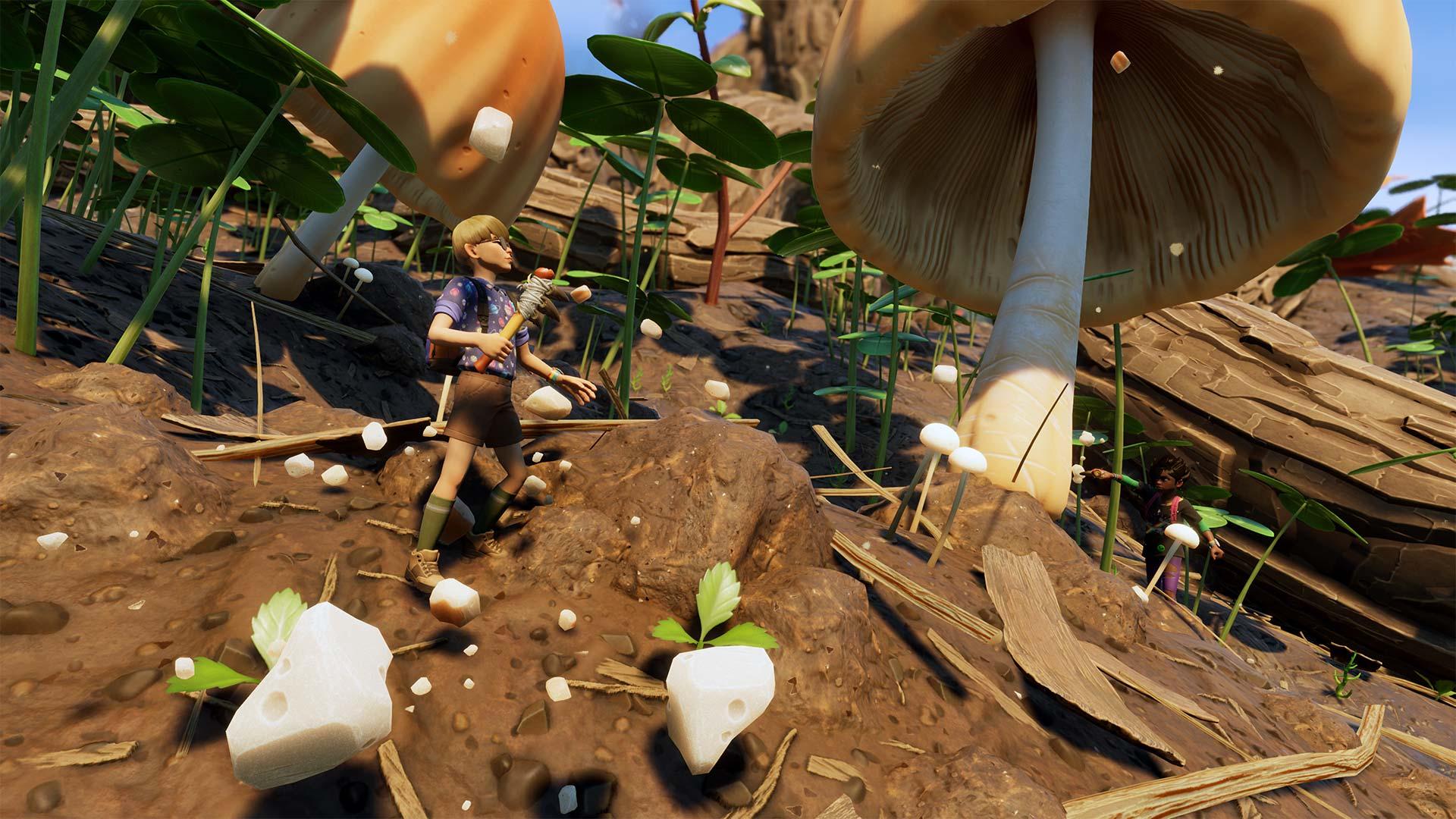 Mushroom Chunks